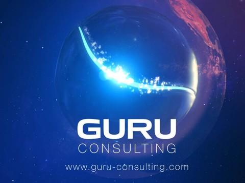 Guru Infotech System